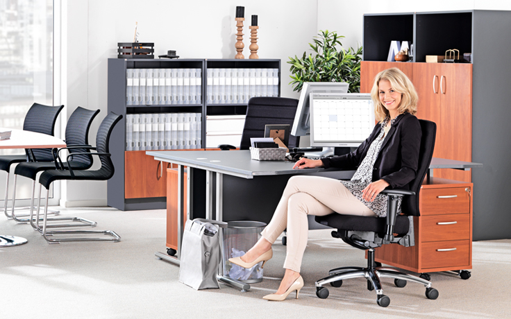 Executive Office Furnishing Combines Finesse and Style