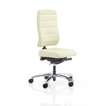 Office chair with molded backrest: mint