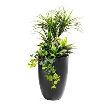 Plantedekorasjon med krukke, svart