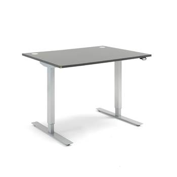 Flexus standing desk, straight, 1200x800 mm, grey laminate