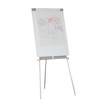 Flip chart stand with writing surface