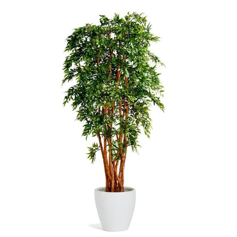 Ruscus artificial plant with pot