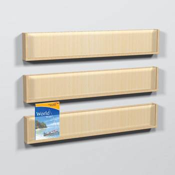 Wall mounted leaflet holders
