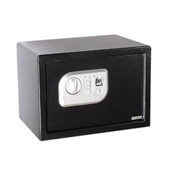 Fingerprint security safe